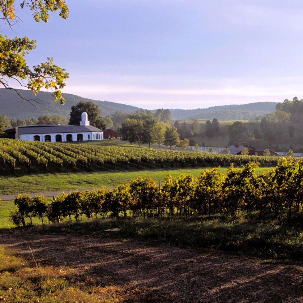 A Perfect Pairing: Experiencing Virginia Wine & History